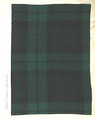 Click image for larger version.  Name:Black Watch.jpg Views:7 Size:181.6 KB ID:36632